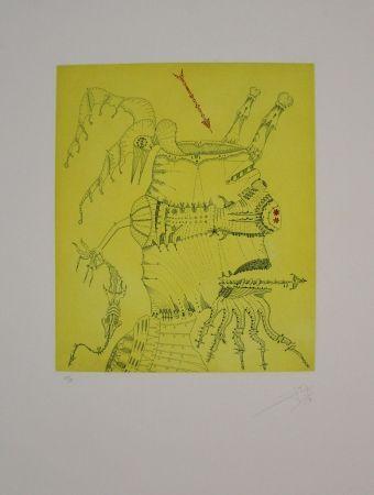 Aguafuerte Y Aguatinta Ponç - Homenaje a Dürer