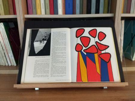 Libro Ilustrado Calder - Hommage