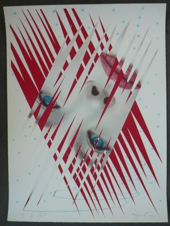 Litografía Rosenquist - Ice Point