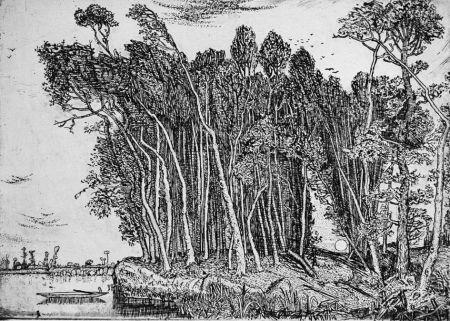 Aguafuerte Bozzetti - Il bosco in riva al fiume: sera