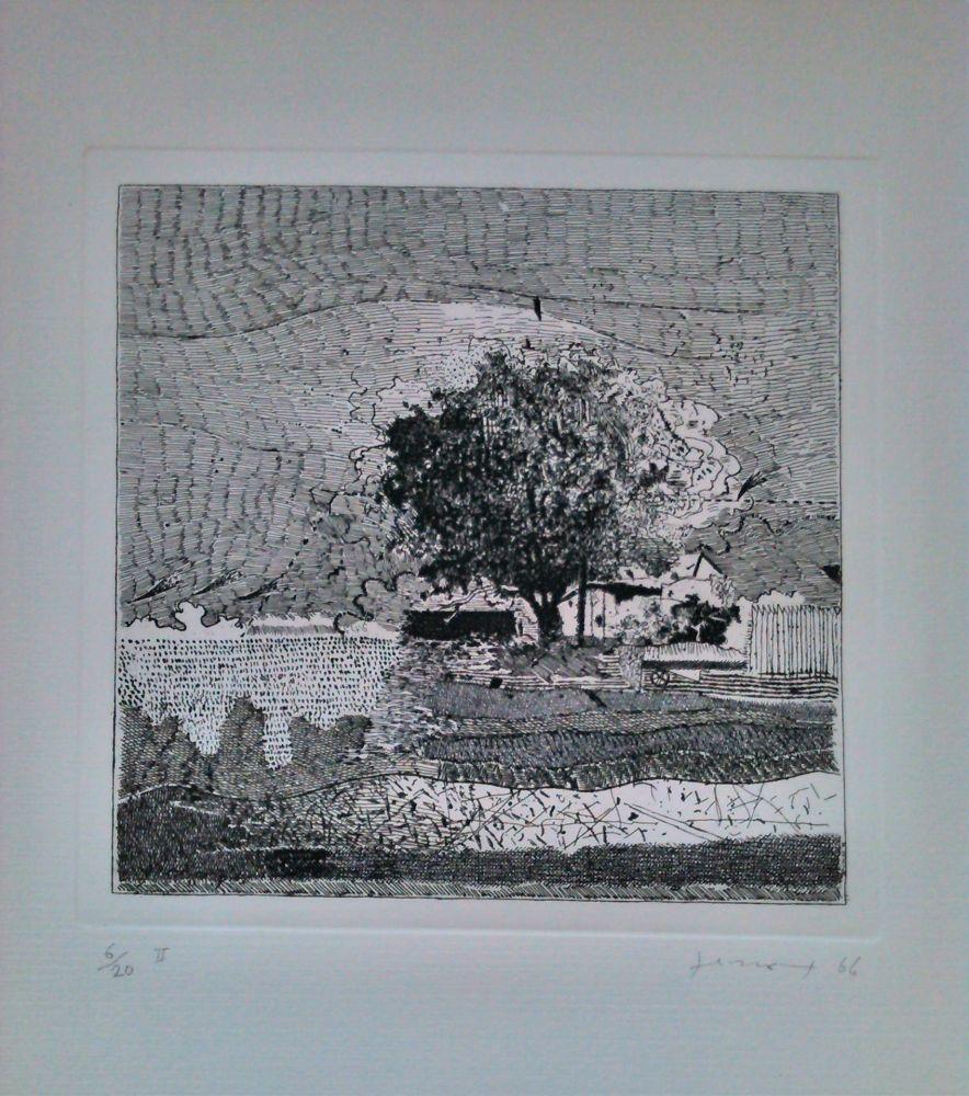 Aguafuerte Ferroni - Il grande albero