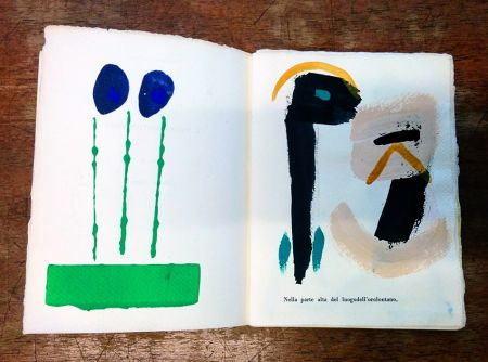 Libro Ilustrado Cascella - Il Magocostruttordivoli