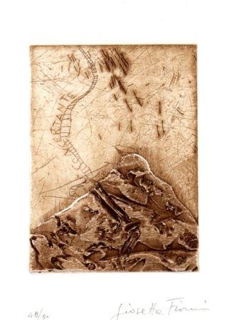 Libro Ilustrado Fioroni - Il titolo