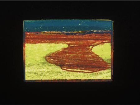 Serigrafía Hodgkin - Indian Views Suite – Plate L