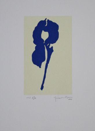 Aguatinta Hernandez Pijuan - Iris blau VIII / Blue Iris VIII