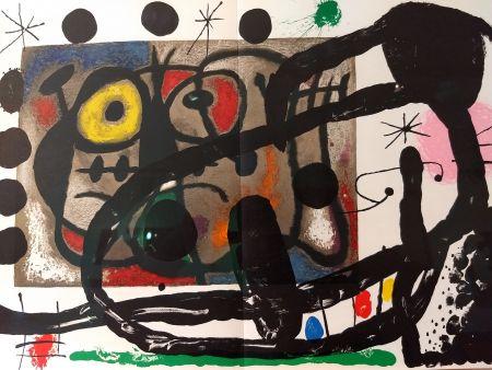 Libro Ilustrado Miró - Joan Miro