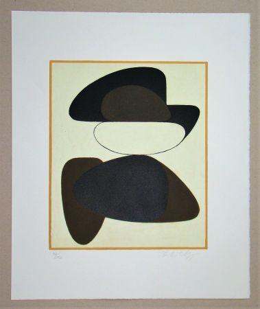 Litografía Vasarely - Kerisle