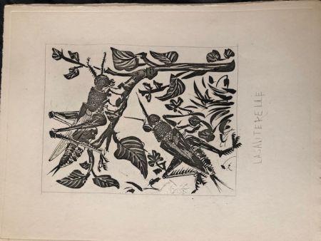 Aguatinta Picasso - La sauterelle