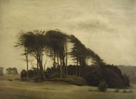 Manera Negra Ilsted - Landscape At Fredensborg