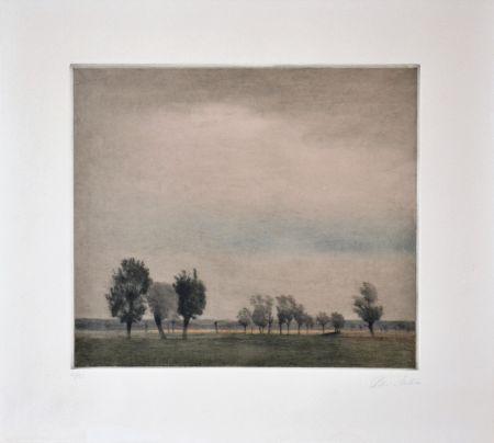 Manera Negra Ilsted - Landscape in Falster
