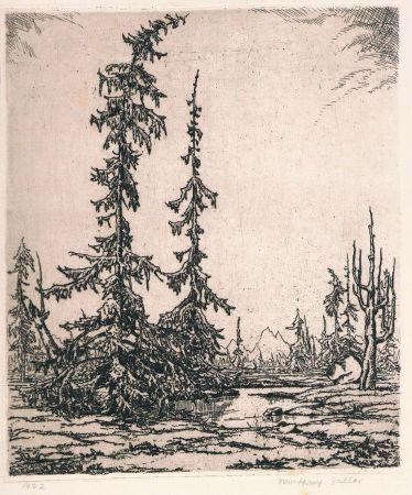 Grabado Zeller - Landschaft