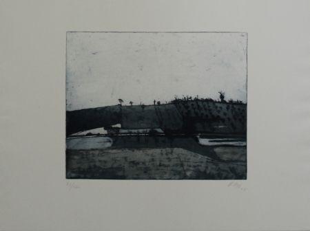 Aguafuerte Y Aguatinta Biederbick - Landschaft / Landscape