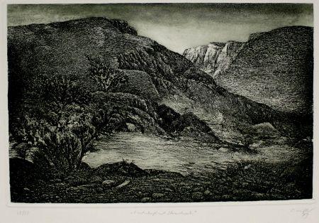 Aguafuerte Y Aguatinta Müller - Landschaft mit Strauchwerk / Landscape with Bushes