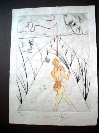 Aguafuerte Dali - Lane Of The Biches ( Venus Aux Fourrures)