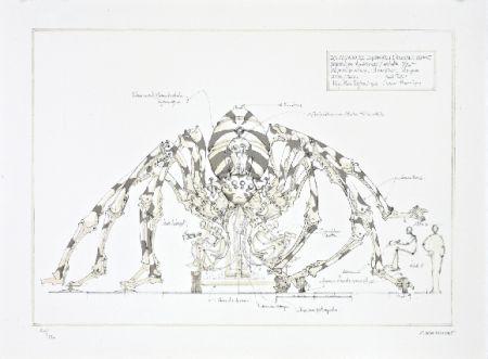 Litografía Delarozière - L'araignée géante