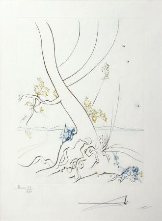 Aguafuerte Dali - L'ARBREDE CONNAISSANCE (THE TREE OF KNOWLEDGE)