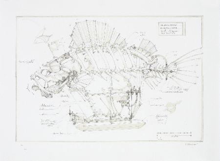 Litografía Delarozière - Le poisson pirate