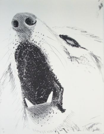 Libro Ilustrado Aillaud - L'Encyclopédie de tous les animaux - Tome III