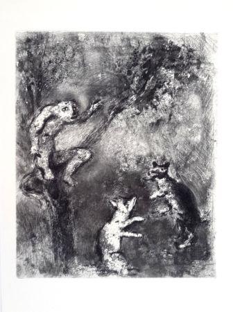 Aguafuerte Chagall - Les fables de La Fontaine