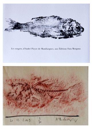 Libro Ilustrado Alechinsky - Les rougets