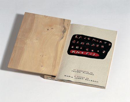 Libro Ilustrado Plensa - Llibre De Fusta
