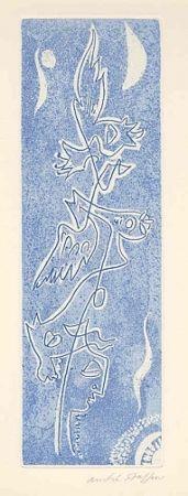 Libro Ilustrado Masson - Méta.morphoses