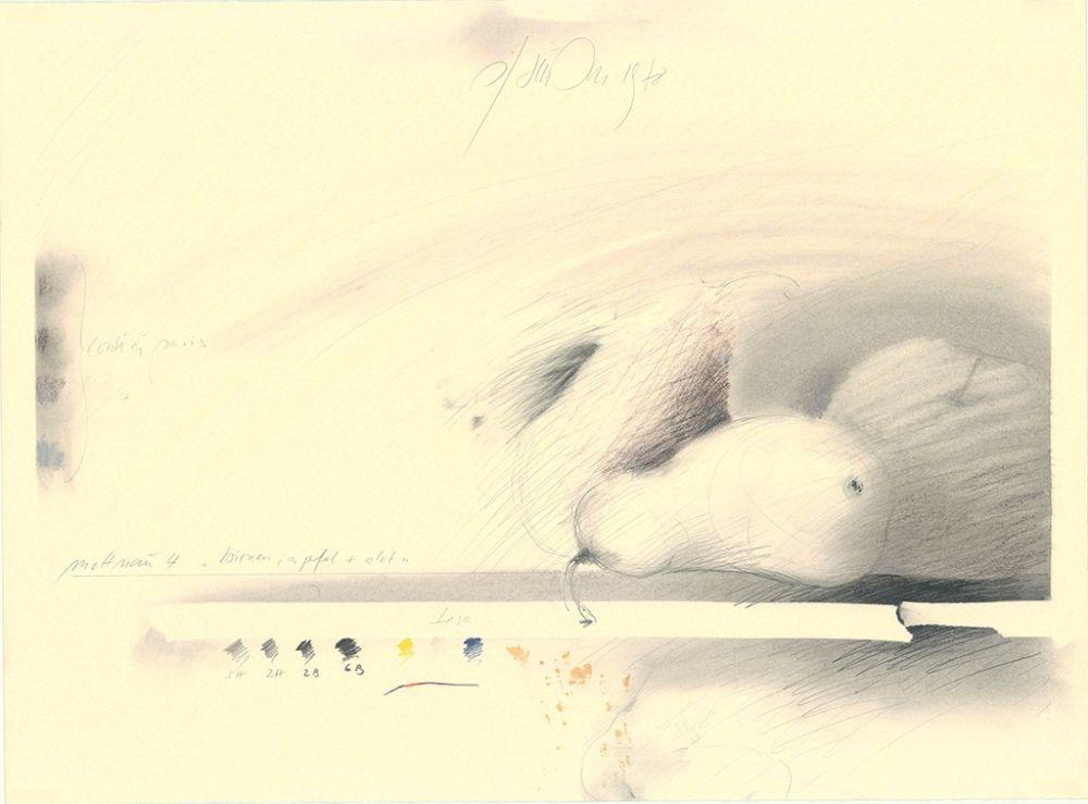 Sin Técnico Sensen - Mettnau 4—Birnen, Apfel + Akt