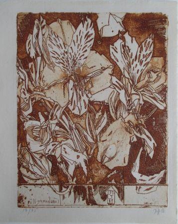 Grabado Janssen - Nigromontanus