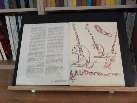 Libro Ilustrado Ernst - No 24