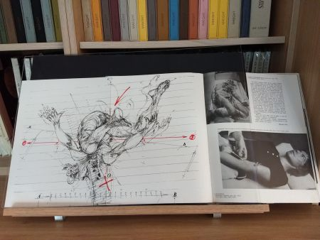 Libro Ilustrado Velickovic - No 44
