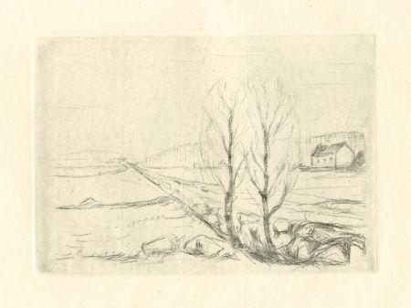 Punta Seca Munch - Norwegische Landschaft / Norwegian Landscape