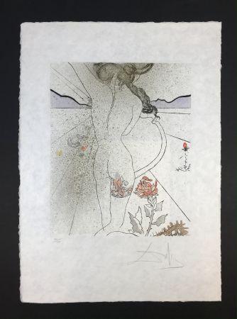 Múltiple Dali - Nu à la jarretiére ( Nude with Garter )