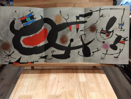 Libro Ilustrado Miró - Oiseau solaire