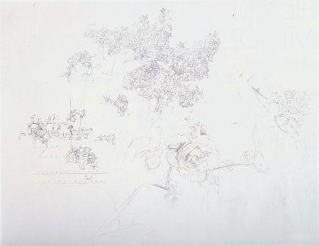 Litografía Lopez - Olympic Centennial
