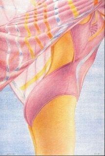 Litografía Kacere - Olympique 92