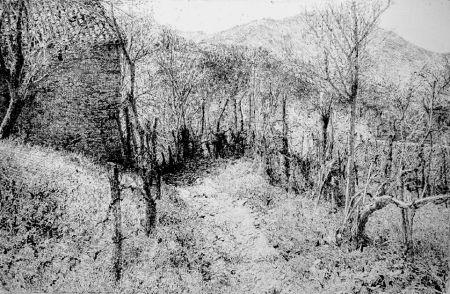 Aguafuerte Barbisan - Paesaggio in collina