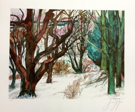 Litografía Grass - Paisaje Invernal