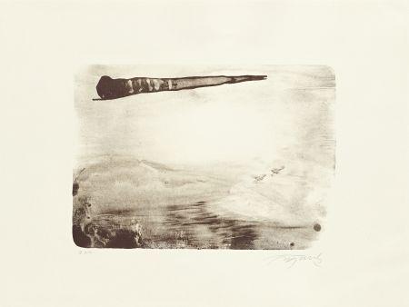 Litografía Fontela - Palm