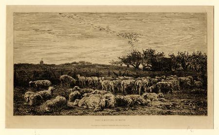 Grabado Daubigny - Parc à moutons:  le matin, in
