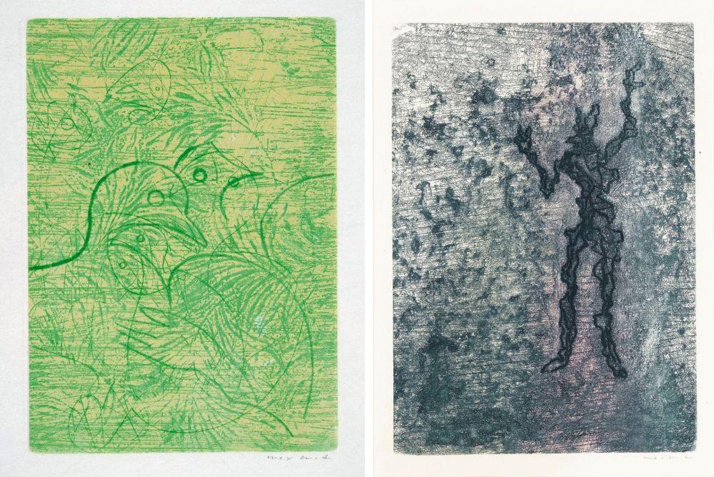 Aguafuerte Y Aguatinta Ernst - PAROLES PEINTES (1959) 2 GRAVURES ORIGINALES DE MAX ERNST (10 gravures originales de Max Ernst, Jacques Hérold, Wifredo Lam, Sébastian Matta et DorotheaTanning. Poèmes d'Alain Bosquet).