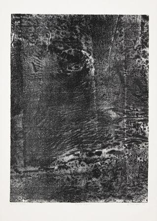Litografía Dubuffet - Paysage japonais