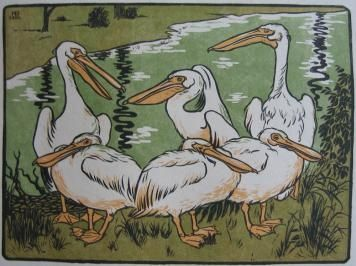 Grabado En Madera Berthold - Pelikane
