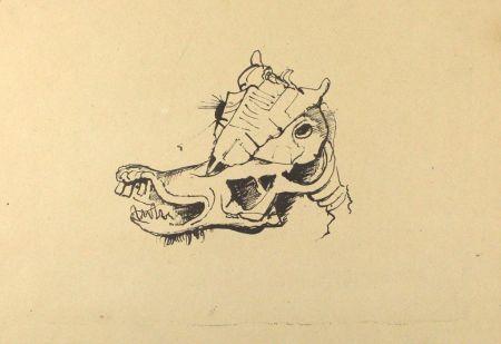 Litografía Hofer - Pferdeschädel / Horse Skull