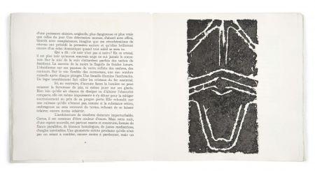 Libro Ilustrado Ubac - Pierres réfléchies