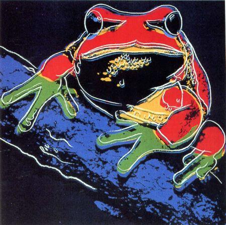 Serigrafía Warhol - Pine Barrens Tree Frog (FS II.294)