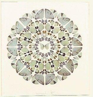 Serigrafía Hirst - Psalm Print, Exaudi, Domine (Diamond dust)