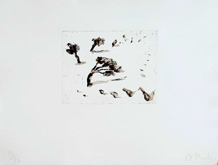 Grabado Barcelo - Pyasage