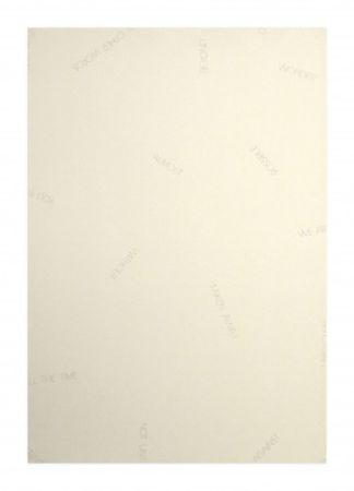 Litografía Barry - Réflexions