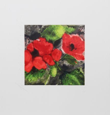 Serigrafía Sultan - Red Poppies