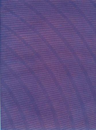 Libro Ilustrado Napoleone - Rimanenze